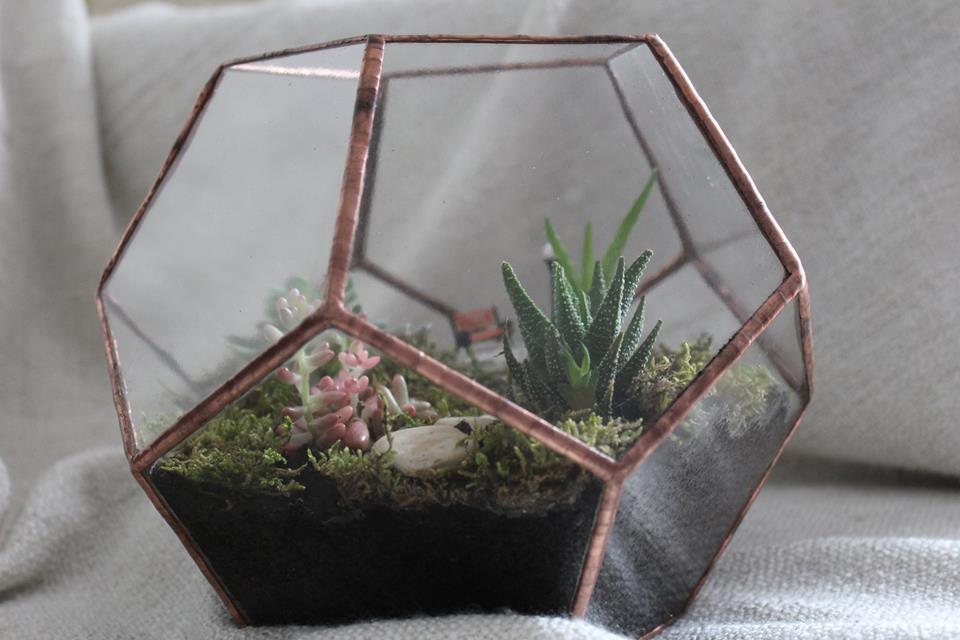 Kis florarium novenykekkel