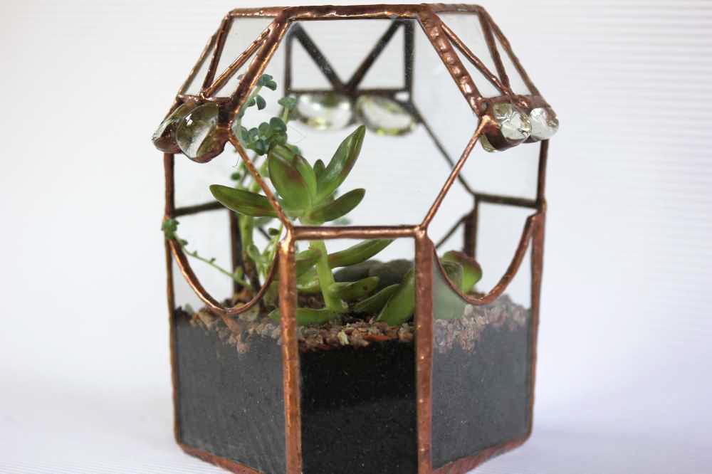 Florarium-1c